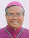 Bishop Dominic Luong